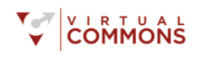 The Virtual Commons